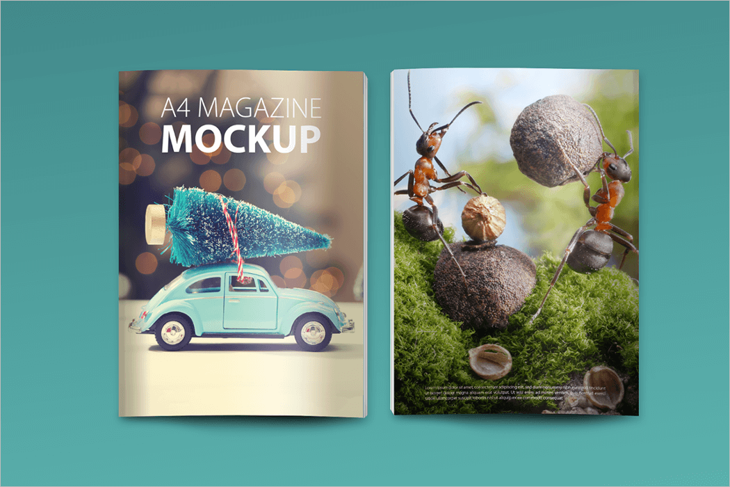 Magazine Design Mockup Template